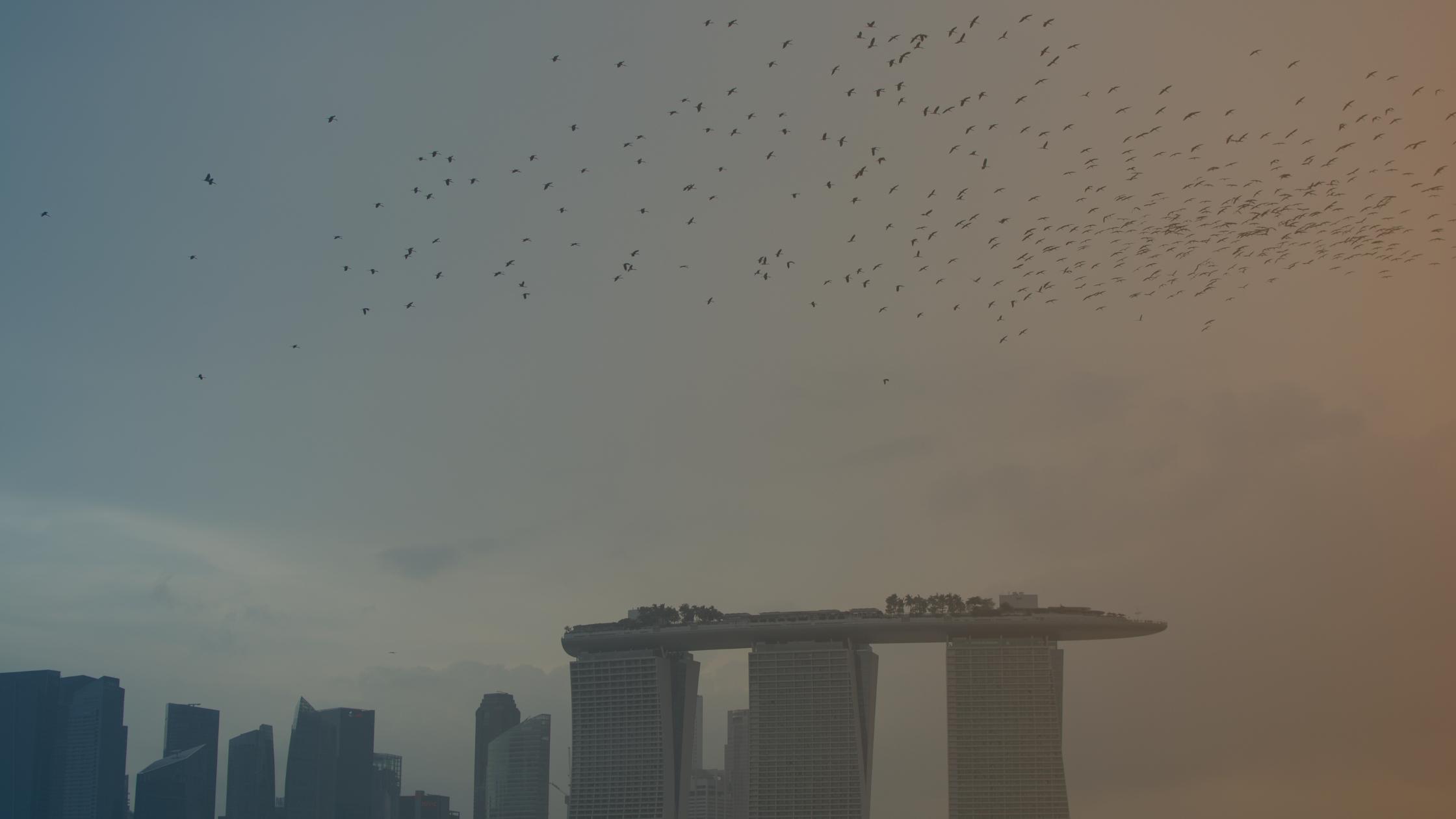 Singapore Samizdat